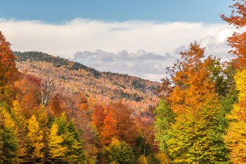 Autumn in the Mountains of the Eastern townships, Canada. Colorful maple trees while hiking to the summit of Mount Orford
