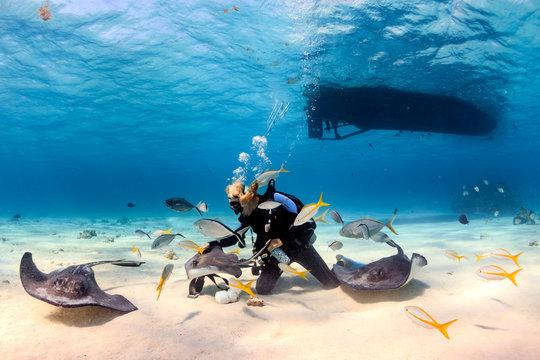 SCUBA Diver and Stingrays