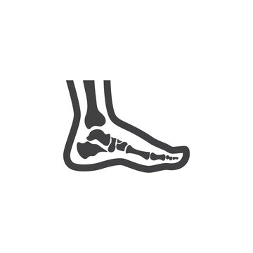Foot anatomy. Single flat icon on white background. Vector illustration.