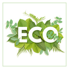 ECO letter with leaves