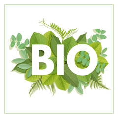 BIO letter with leaves
