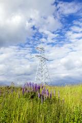 electric pole, field