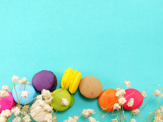 french macaroons with dryied flower and copy space background