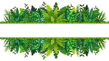 Illustration of a tropical rainforest banner
