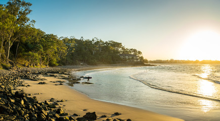 Surfer Beach Sunset. Surfer returning to shore at famous Little Cove beach, Noosa, Australia. Bright sand, rock pebbles and eucalyptus forest on the shore. Sun shines warm yellow.