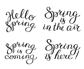 Hand drawn spring lettering compositions. Calligraphic letters. Hello spring