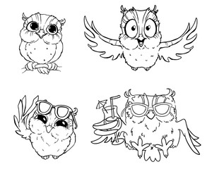 Cartoon owls. black-and-white owls hand-drawn contour on a white background for children coloring. For adult anti stress coloring book.