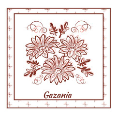 A beautiful bouquet of gazania in a frame on white background