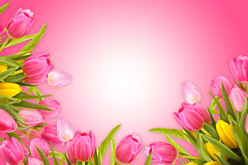 pink greeting card background with spring tulip flowers