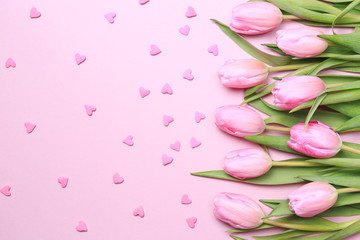 Pink tulips with pink heart sprinkles on the pink background. Fl