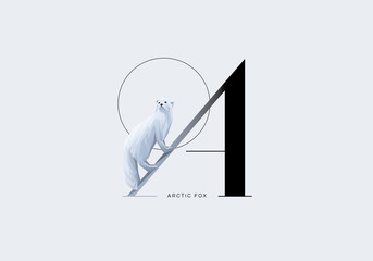 Capital letter a with white arctic fox