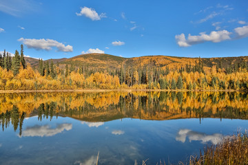 Panoramic view of a clear lake with reflections in fall, Chena River State Park, Alaska