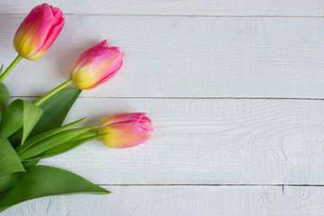 Colorful tulips on wooden table. Top view with copy space