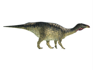 Lurdusaurus Side Profile - Lurdusaurus was a herbivorous ornithopod iguanodont dinosaur that lived in Niger in the Cretaceous Period.