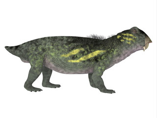 Lytrosaurus Side Profile - Lystrosaurus was a dicynodont therapsid dinosaur that lived in the Permian and Triassic Periods of Antarctica, India, Africa, China, Mongolia and Russia.