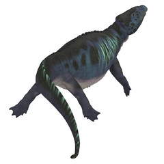 Placodus Dinosaur Tail - Placodus was a marine reptile that swam in the shallow seas of the Triassic Period in Europe and China.