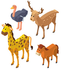 3D design for wild animals