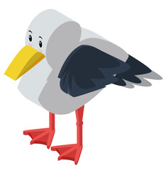 3D design for seagull