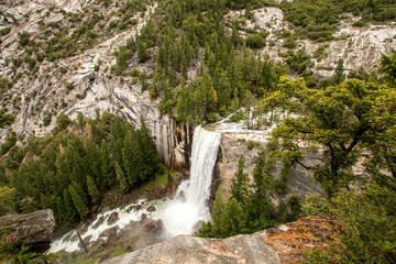 Yosemite National Park Forest - Etat unis