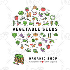 Vegetable seeds banner Organic shop Natural product card Seed growing flyer. Fresh vegetarian food, Veggie thin line icons, Vegetables background. Vector flat illustration