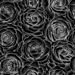 Beautiful monochrome, black and white seamless background with roses.