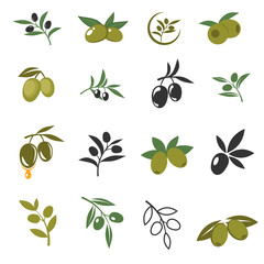 Wall Mural - Vector mediterranean olive branches icons with oil drops, leaves and olives isolated on white background