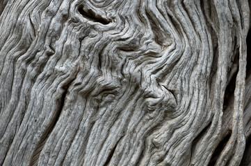 wood blackground taxture