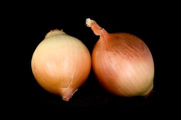 gold onion bulbs isolated on a black