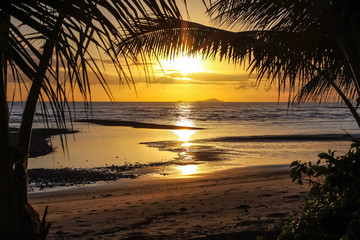 Sunset under Palm trees on a Tropical beach in Queensland, Australia