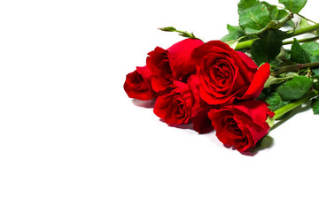 Bunch of red rose on white background, valentine day concept