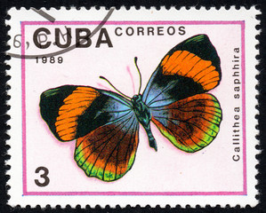 UKRAINE - CIRCA 2017: A stamp printed in Cuba, shows image of a butterfly Callithea saphhira close-up, circa 1989
