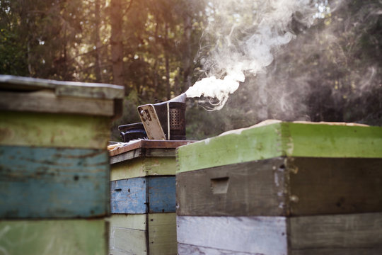 Smoke at honey farm
