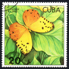 UKRAINE - CIRCA 2017: A stamp printed in Cuba, shows image of a butterfly Phoebis avellaneda (Herrich-Schaeffer) close-up, circa 1982