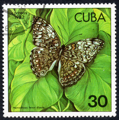 UKRAINE - CIRCA 2017: A stamp printed in Cuba, shows image of a butterfly Hamadryas ferox diasia close-up, circa 1982