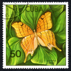 UKRAINE - CIRCA 2017: A stamp printed in Cuba, shows image of a butterfly Marpesio eleuchea eleuchea close-up, circa 1982