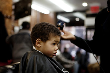Boy (4-5) having haircut
