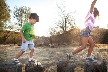 View of children ( 4-5, 6-7 ) playing on tree stump
