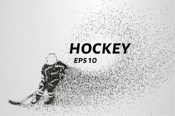Hockey from the particles. Hockey consists of circles and points. Vector illustration