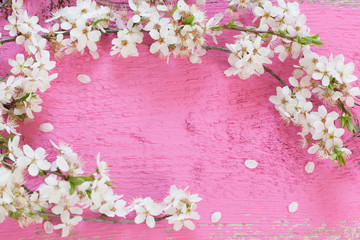 white spring flowers on pink wooden background