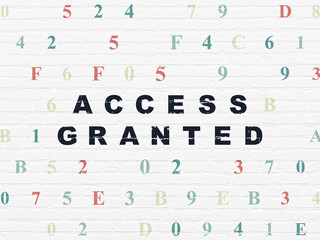 Safety concept: Access Granted on wall background