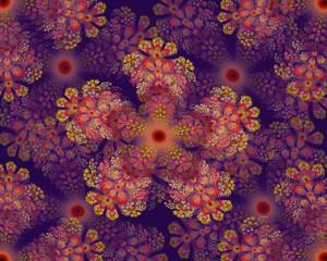 Colorful flower mandala fractal star