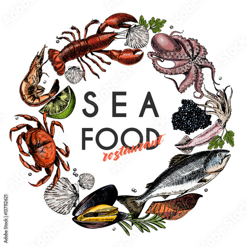 Vector Hand Drawn Seafood Bannercolored Lobster Salmon Crab Shrimp Ocotpus Squid Clams