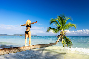girl walks down the palm tree over the sea and holds the balance