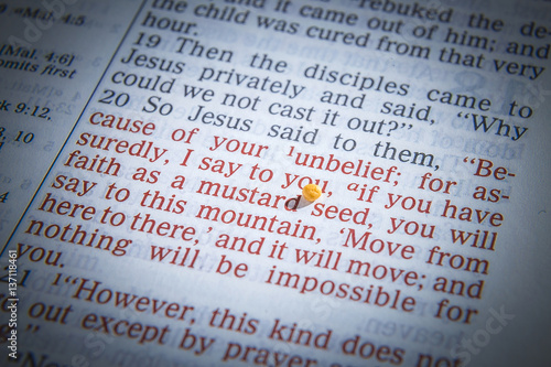 Mustard Seeds On A Open Bible Page Il Rating The Verse If You Have Faith As