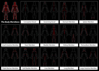 Body meridians of a woman - Detailed diagram with main acupuncture meridians, anterior and posterior view. Isolated vector illustration on black background.