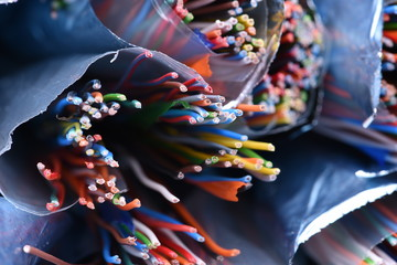 Colored copper  telecommunication cables closeup