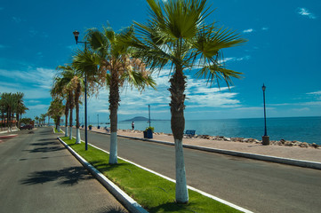 Palm lined malecon boulevard in Loreto Mexico on Sea of Cortez
