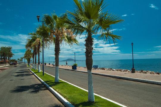 Palm lined malecon boulevard in Loreto Mexico on Sea of Cortez