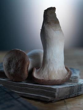 Two mushrooms, still life
