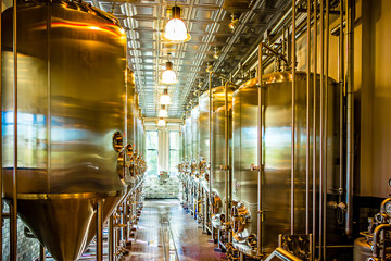 beer distillery brewing equipment